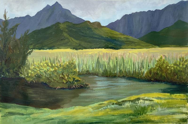 Kawainui Marsh Revisited
