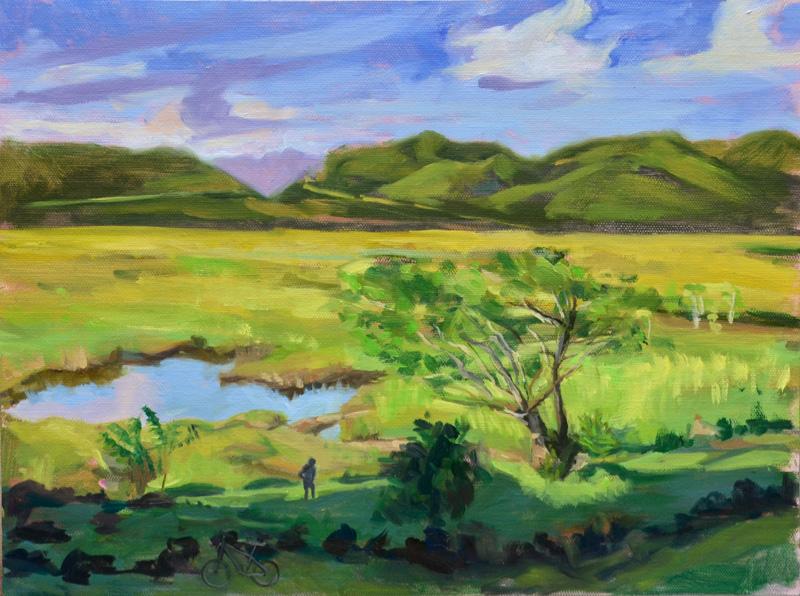 Ulupo Heiau View of Kawainui
